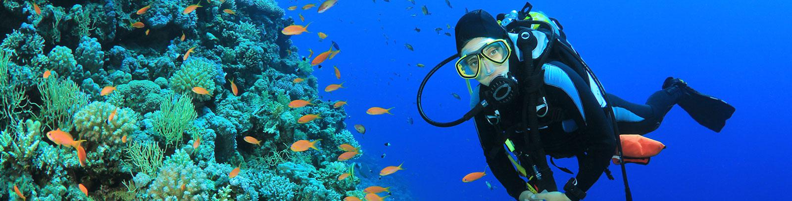 Isla de Coral (Coral Island) at Rincon de Guayabitos