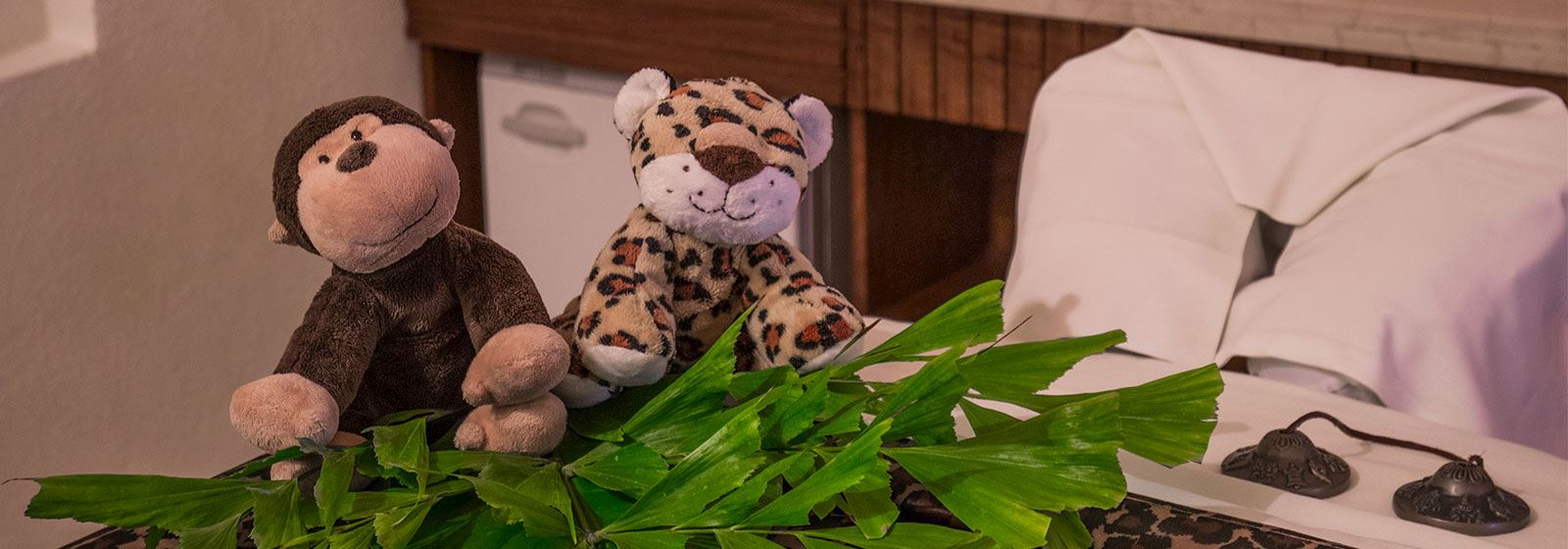 Grand Velas Riviera Nayarit Kids Spa